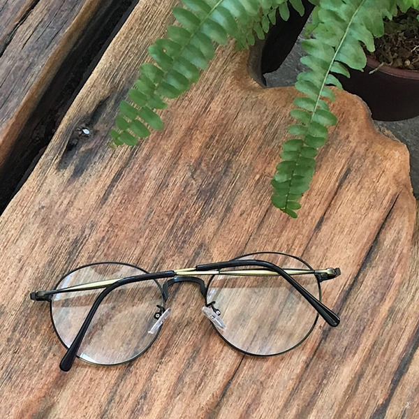 daily point glasses